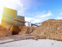 «Чёрное золото», или как получить доходы из отходов