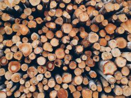 Автоматизированный учёт лесоматериалов от компании SICK